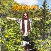 Marijuana de Adonai