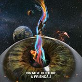 Vintage Culture & Friends 3 by Vintage Culture