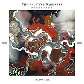 The Fruitful Darkness Instrumentals by Trevor Hall