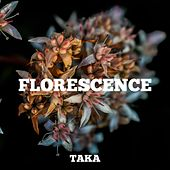 Florescence by Taka