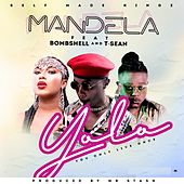 Yolo (You Only Live Once) [feat. Bombshell, T Sean] (Radio Edit) by Mandela