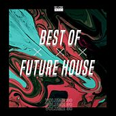 Best of Future House, Vol. 30 by Various Artists