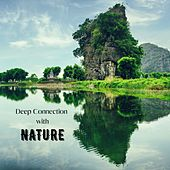 Deep Connection with Nature: Best Serenity Meditation Relaxation Music de Various Artists