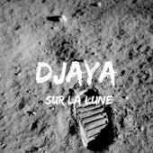 Sur la lune de Djaya