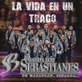 La Vida En Un Trago de Banda Los Sebastianes