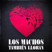 Los Machos También Lloran by Various Artists