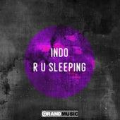 R U Sleeping de Indo