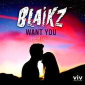 Want You (Remixes) by Blaikz