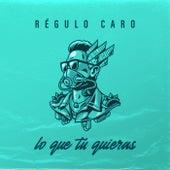 Lo Que Tu Quieras by Regulo Caro