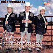 Niña Hermosa by Trío Dinastía Hernández