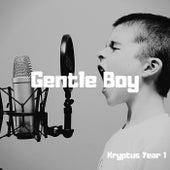 Gentle Boy de Kryptus Year 1