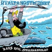 Hvalfangstmuseet by Bare Egil Spellemannslag