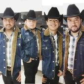 En Vivo Desde Saltillo Coahuila (En Vivo) de Pureza Brava