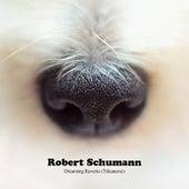 Dreaming Reverie (Träumerei) by Robert Schumann