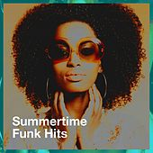 Summertime Funk Hits by Graham Blvd, Electric Groove Machine, Silver Disco Explosion, Chateau Pop, CDM Project, Sweet Soul Express, The Funky Groove Connection, 2 Steps Up, Down4Pop, TV Sounds Unlimited