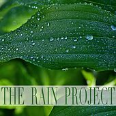 The Rain Project by Nature Sounds (1)