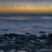 Nature Sound Collection de Nature Sound Collection