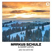 Are You With Me de Markus Schulz