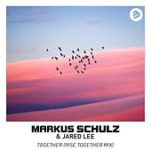 Together Rise Together Mixes de Markus Schulz