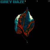 B12 de Grey Daze