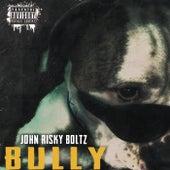 Bully by John Risky Boltz