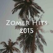Zomer Hits 2015 van Various Artists