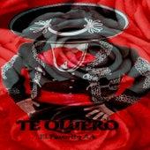 Te Quiero (Remix) de El Favorito AA