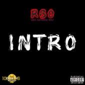 Intro de R.B.O