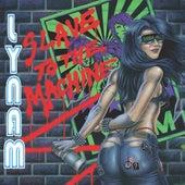 Slave to the Machine de Lynam