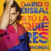 Si Tú La Quieres (Versión Tropical) de David Bisbal