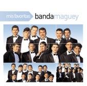 Mis Favoritas de Banda Maguey