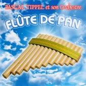 Flûte De Pan von Pascal Tippel