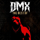 Very Best Of de DMX