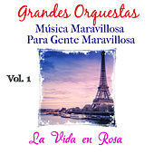 Música Maravillosa para Gente Maravillosa. la Vida en Rosa (Vol. 1) de Grandes Orquestas