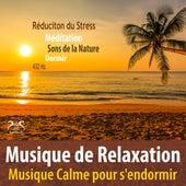 Musique de Relaxation - Réduction du Stress, Musique calme pour s'endormir, 432Hz, Méditation, Sons de la nature, Dormir von Max Relâchement