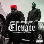 Elevate (feat. Big WY) di Mitchy Slick