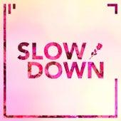 Slow Down von James Marriott