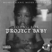 Project Baby von Young Los