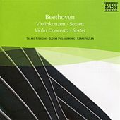 Beethoven: Violin Concerto / Sextet di Various Artists