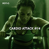 Cardio Attack, Vol. 14 by Hot Q