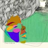 Your Voice, Above the Storm von Stanford Talisman