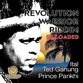 Revolution Warrior Riddim Re-Loaded by Ted Ganung