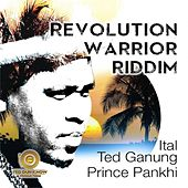 Revolution Warrior Riddim de Ted Ganung