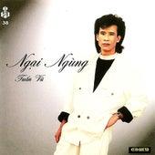 Ngai Ngung de Various Artists