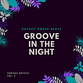 Groove In The Night (Catchy House Beats), Vol. 2 by Various Artists