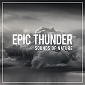 Epic Thunder von Sounds Of Nature
