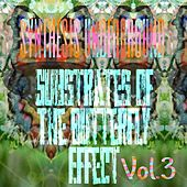 Substrates of the Butterfly Effect, Vol. 3 by Synthesis Underground