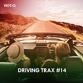 Driving Trax, Vol. 14 de Hot Q