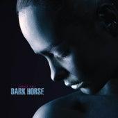 Dark Horse by Daniel Hall
