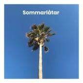 Sommarlåtar 2020 - Sommar 2020 - Sommar sommar sol by Various Artists